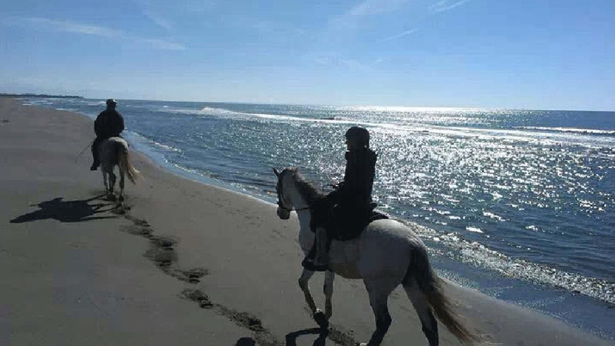 Horse riding on Velika Plaža Beach